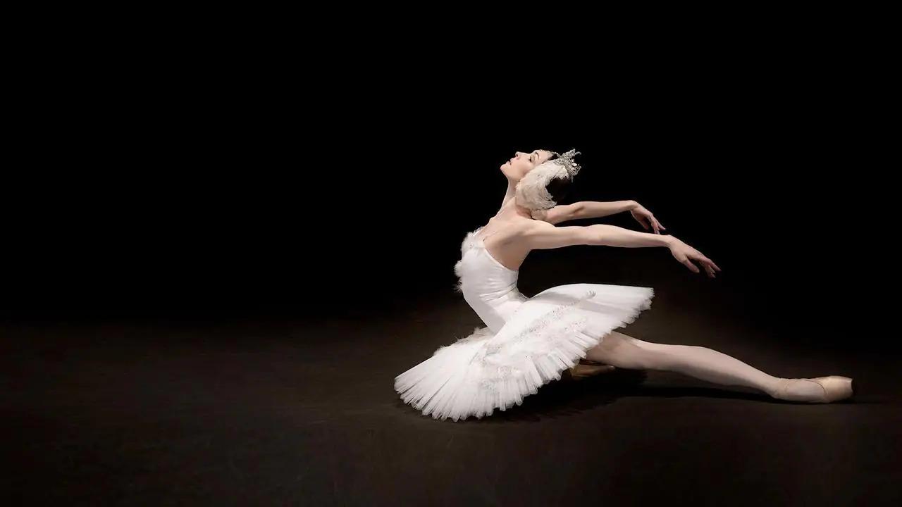 Le Lac Des Cygnes (Ballet Du Bolchoi)